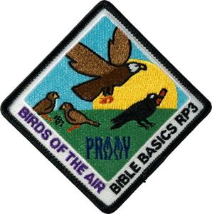Picture of Birds of the Air Patch