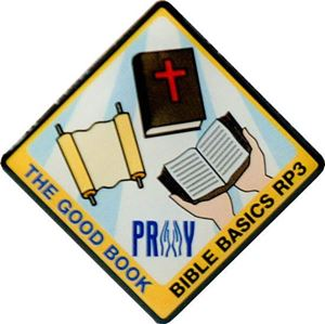 Picture of The Good Book Pin