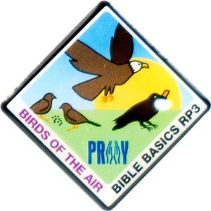 Picture of Birds of the Air Pin