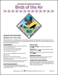 Picture of Birds of the Air Curriculum Pamphlet (PDF)