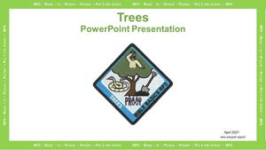 Picture of Trees PowerPoint Presentation